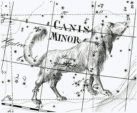 Star Tales – Canis Minor